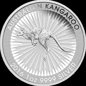 Australian Silver Kangaroo